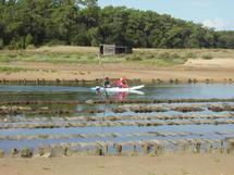 Une Fête pour la Nature les 16 et 17 mai en Vendée