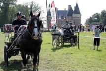 La fête du cheval 2010 à Moutiers les Mauxfaits