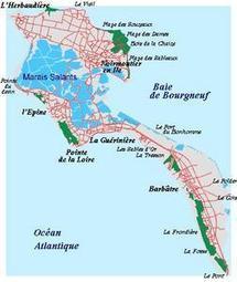 """""""Vivre l'île 12 sur 12"""", c'est près d'un millier d'adhérents résidents principaux ou secondaires"""