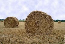 Comité sécheresse du 8 juin 2011: maintien des mesures de restrictions en vigueur concernant les usages de l'eau en Vendée