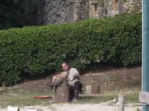 Valéry et Julien, fauconniers et fiers de leurs oiseaux