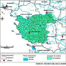 Le Boeuf de Vendée  obtient l'IGP