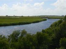 Création de la réserve naturelle nationale de la Casse de la Belle Henriette en Vendée