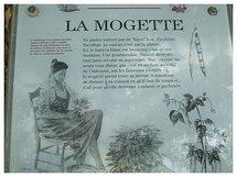 La 33e édition de la fête de la Mogette ce dimanche 9 octobre aux Brouzils