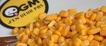 Dominique SOUCHET demande le maintien du moratoire sur le maïs OGM Monsanto
