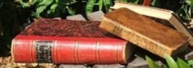 Le troisième Salon du livre ancien se tient ce week end au Château-d'Olonne