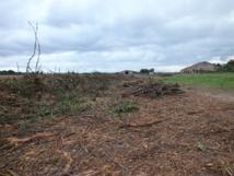 L'association brétignollaise La Vigie s'élève contre le saccage des abords de la ferme de la Normandelière