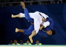 Les championnats de France de judo se dérouleront au Vendeespace du  8 au 9 mars 2014