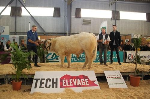 Tech'Elevage : les éleveurs ont la volonté d'aller de l'avant