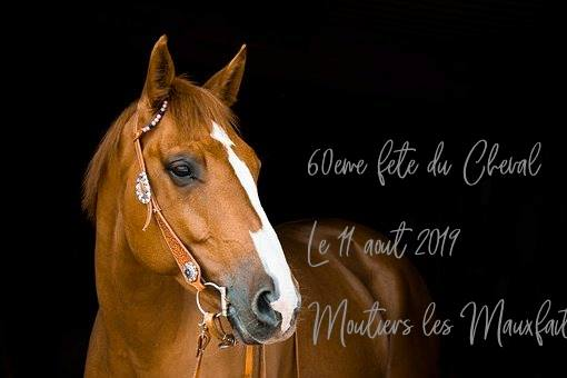 Moutiers les Mauxfaits: 60 ème fête du cheval dimanche 11 août au Château du Bois Lambert