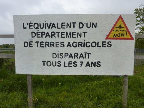 Notre-Dame-des-Landes : la moitié des Français opposés à l'aéroport