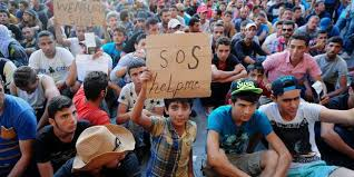 Réaction d'Yves Auvinet et de Anne-Marie Coulon face au drame des réfugiés : la générosité des Vendéens doit s'accompagner de la fermeté de l'Etat.