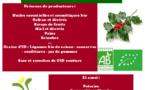 Marché de Noël à La Roche-sur-Yon avec Graine d'ID le 9 décembre