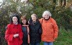 Talmont Saint-Hilaire : 50 000 bulbes de tulipes seront plantés pour la recherche médicale