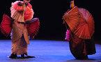 La Roche-sur-Yon: le Cirque invisble les 16, 17 et 18 octobre