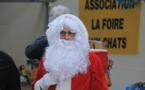 Les marchés de Noël à la Roche-sur-Yon , l'Epine, Thorigny ...