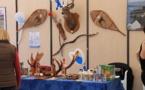 """La foire-expo des Sables d'Olonne sera présente place du Vendée Globe les 28, 29, 30 et 31 mars 2014 avec pour thème principal """"La Louisiane""""."""