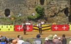 L'Art de la Fauconnerie dans la cour du Château de Talmont