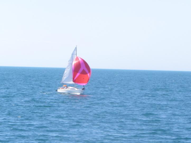 Course Croisère des Ports vendéens: départ de Port Bourgenay ce samedi