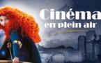 Une séance de cinéma en plein aire le vendredi 13 août